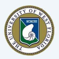 Application essay for university of florida